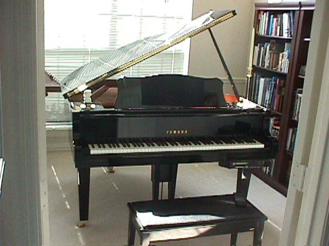 pianoday.jpg (47046 bytes)
