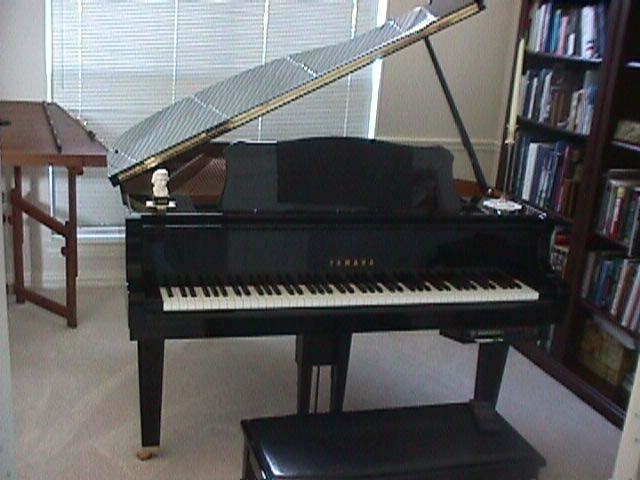 pianoz.jpg (43848 bytes)